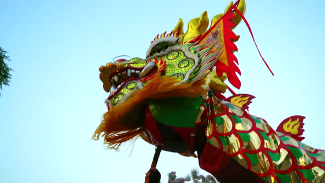 dragon dance show with firework in the festival chinese new year. - dragon stock videos & royalty-free footage