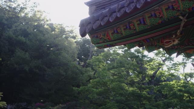 dragon flies flying around eaves of songgwangsa temple / suncheon-si, jeollanam-do, south korea - moulding trim stock videos & royalty-free footage