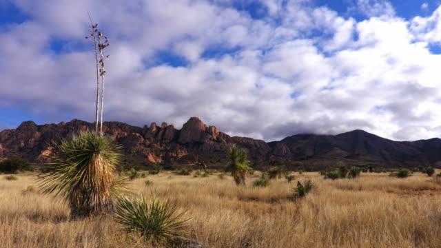dragoon mountains in southern arizona - arizona stock videos & royalty-free footage