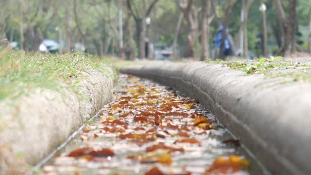 drain in the park with dry leaves - protection stock videos & royalty-free footage