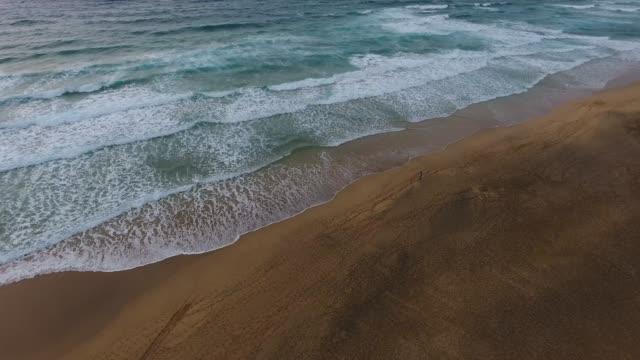 vídeos y material grabado en eventos de stock de espectacular playa desierta en fuerteventura - isla