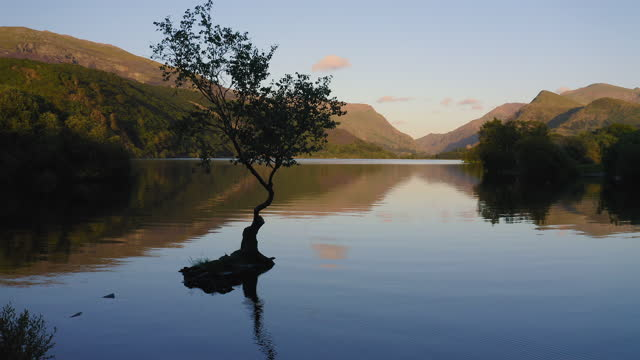 dramatic lake reflection of isolated tree silhouette - scenic circling view at snowdonia national park in wales - tranquility stock videos & royalty-free footage