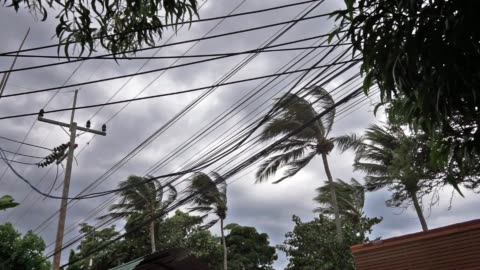 dramatic moody sky strong wind as tropical storm pabuk approches - power in nature stock videos & royalty-free footage