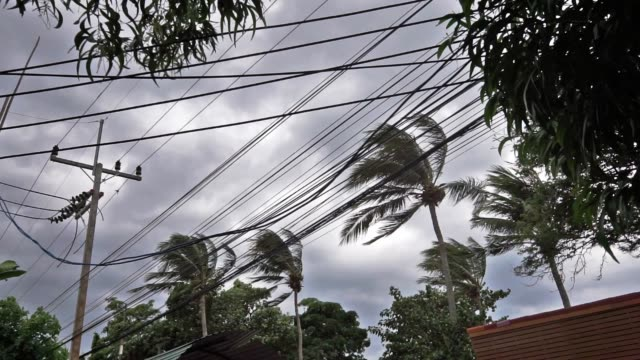 dramatic moody sky strong wind as tropical storm pabuk approches - power line stock videos & royalty-free footage