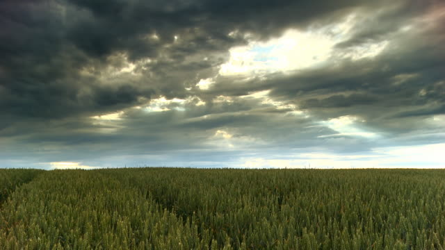 HD CRANE: Dramatic Sky Over The Countryside