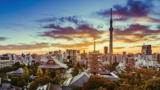 dramatic sunrise timelapse of tokyo cityscape, japan - pagoda stock videos & royalty-free footage