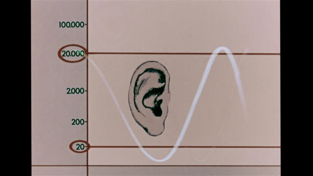 vídeos de stock e filmes b-roll de drawing of young human ear w/ chart range 20 2000, to 20,000 . sound waves: waves on monitor from 20 up to 20,000 more frequent vibrations create... - shaking