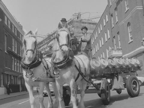 drayman drives his cart along a london street. - hat stock videos & royalty-free footage