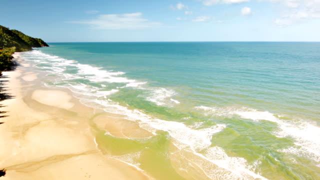 夢のビーチ、ヤシの木の影