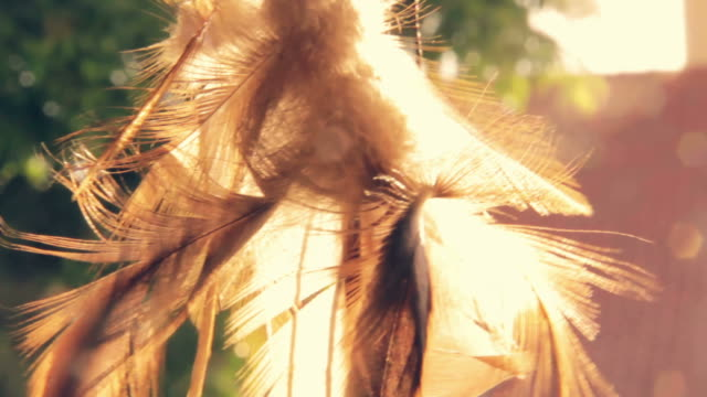 dreamcatcher - north american tribal culture stock videos & royalty-free footage