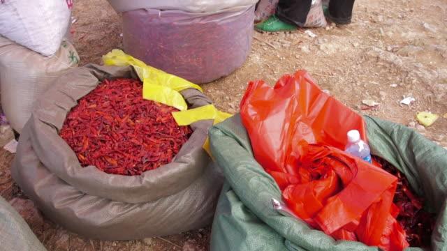 dried chili pepper vendor in market, dali, yunnan, china - mestolo video stock e b–roll