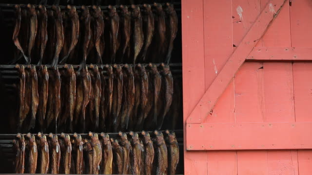 dried fishes in the sun - seafood stock videos & royalty-free footage