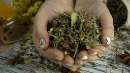 Dried flowers and herbs in the woman hands. Healthy and organic food, herb medicine, natural care, aromatherapy and seasoning concept.