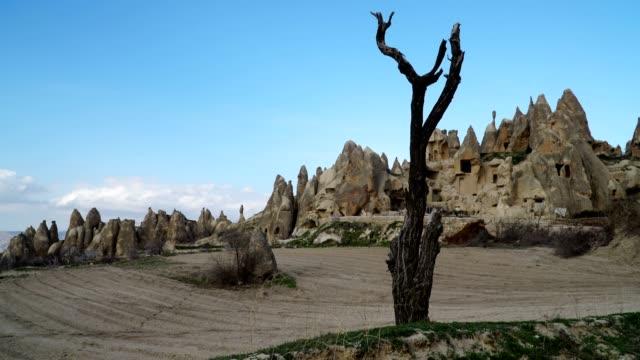 dried tree and rock hoodoo - rock hoodoo stock videos & royalty-free footage