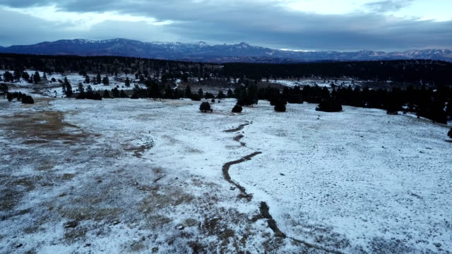 dried up stream bed in snowy field by drone in colorado - evergreen stock videos & royalty-free footage