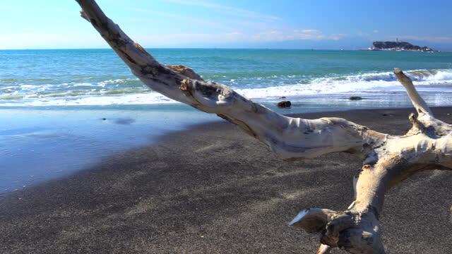 ビーチ|の流木富士山と江ノ島 - 相模湾点の映像素材/bロール