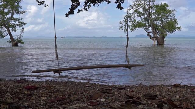 driftwood swing at ocean edge - andaman sea stock videos & royalty-free footage