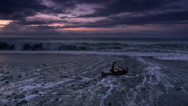 stockvideo's en b-roll-footage met driftwood - drijfhout