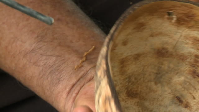 drill piercing coconut shell - drill bit stock videos and b-roll footage