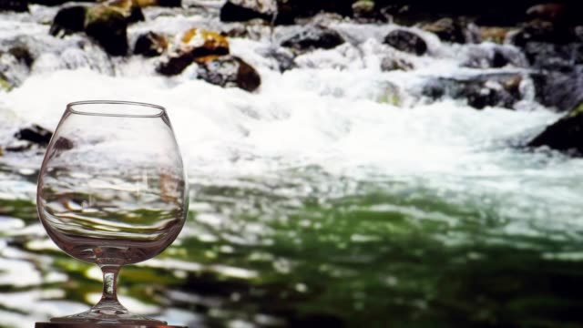 drinking brandy near the river - brandy snifter stock videos and b-roll footage