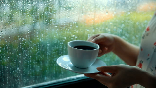 vídeos de stock e filmes b-roll de drinking coffee on a rain day - morno