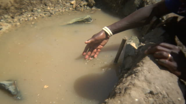 drinking puddle in africa - poverty stock videos & royalty-free footage