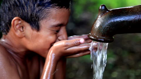 drinking water - environment stock videos & royalty-free footage