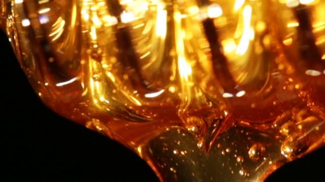 vídeos de stock, filmes e b-roll de dripping honey - mel