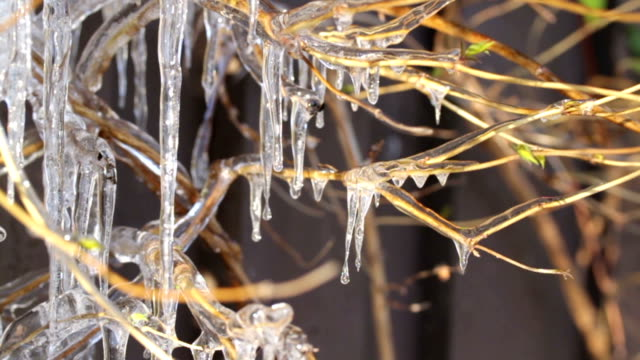 dripping icicles - icicle stock videos and b-roll footage