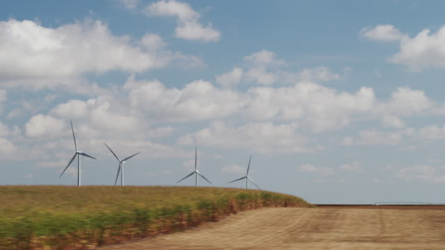 Drive by - wind powered turbines spinning in a large field of corn.