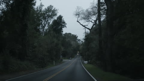 pov drive on highway through forest outside san jose, california - point of view stock videos & royalty-free footage