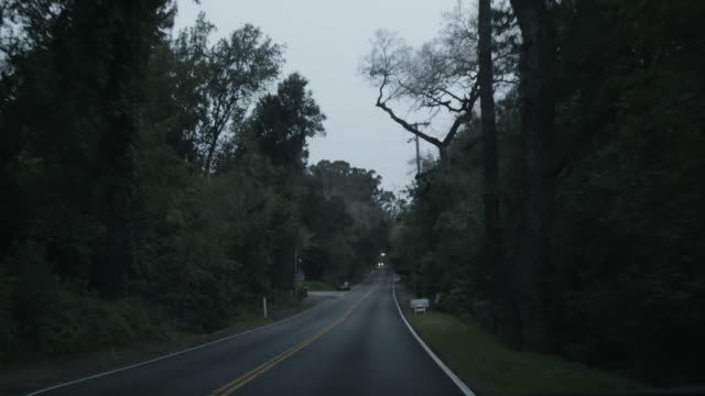 POV drive on highway through forest outside San Jose, California