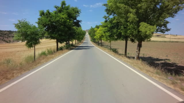 POV drive through tree lined narrow country road with old stone houses against blue sky