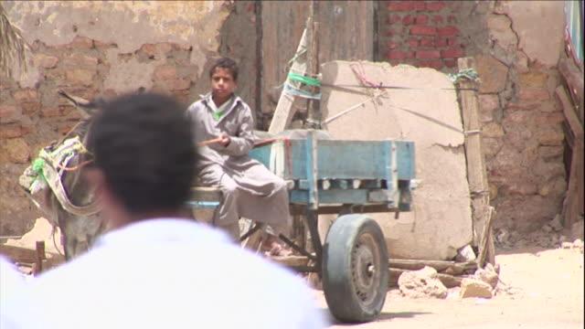 a driver goads his donkey into pulling a wagon. - adobe bildbanksvideor och videomaterial från bakom kulisserna