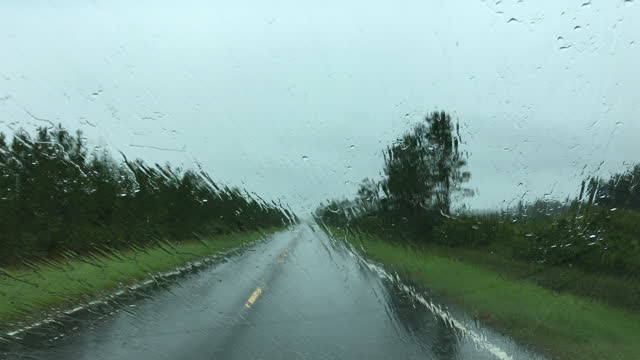 driver view along forest road in blinding rain until wipers come on - florida us state stock videos & royalty-free footage
