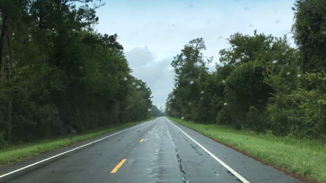 driver view along rural forest road in light rain with wipers intermittently swiping across - florida us state stock videos & royalty-free footage