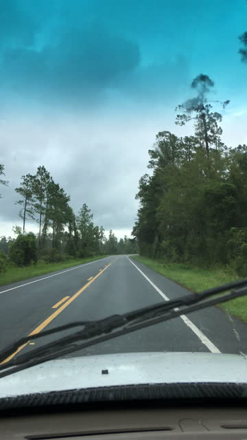 driver view along rural forest road with light rain and wipers on - florida us state stock videos & royalty-free footage