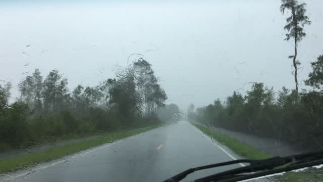 driver view along rural forest road with wipers unable to clear blinding rain - florida us state stock videos & royalty-free footage