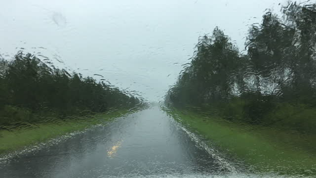 driver view in heavy rain on rural forest road with wipers coming on - florida us state stock videos & royalty-free footage