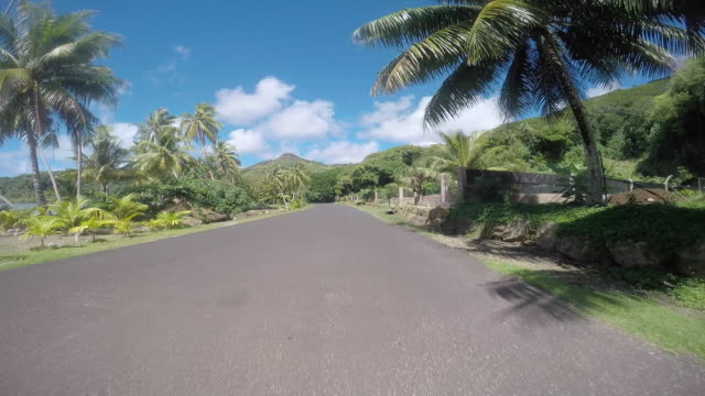 Drivers POV, road lined with tropical tree and the sea. end of the road
