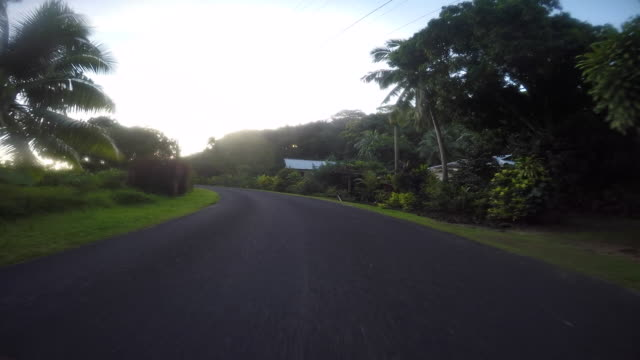 drivers pov, road lined with tropical tree and the sea. end of the road - tahitian culture stock videos & royalty-free footage