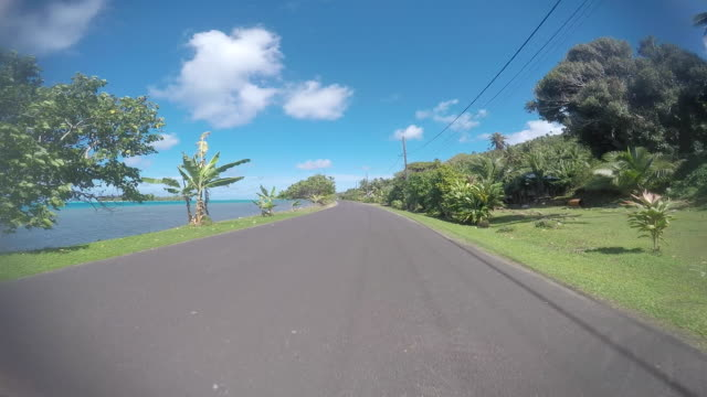 drivers pov, road lined with tropical tree and the sea. town - tahitian culture stock videos & royalty-free footage
