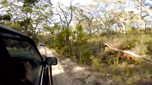 Driving a 4x4 Through Fraser Island