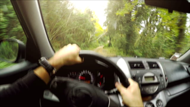 Driving a car offroad: inside view
