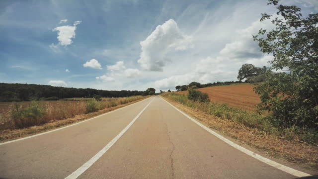pov driving a car on summer road - scena rurale video stock e b–roll