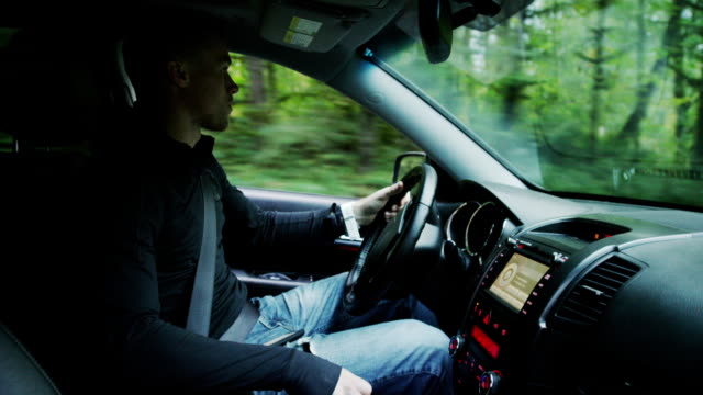 driving a car through forest - sports utility vehicle stock videos and b-roll footage