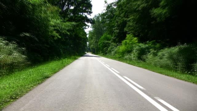 お車でフォレスト - 乗物後部から見た視点点の映像素材/bロール