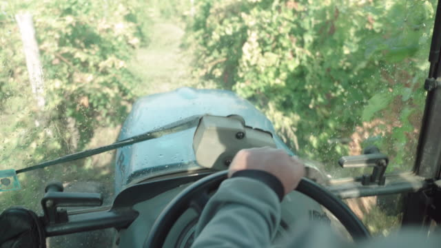 pov, driving a fertilising tractor in the vineyards fields in summer. abundance of the crop. agricultural activity. fertilising the soil. - tractor stock videos & royalty-free footage