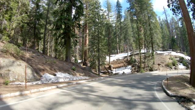 vídeos y material grabado en eventos de stock de conduciendo un camino sinuoso hasta el parque nacional sequoia - parque nacional de secoya
