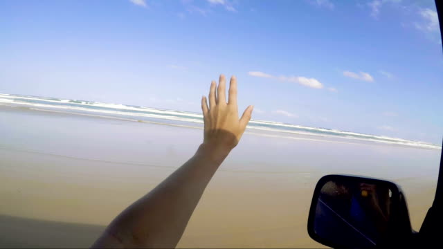 driving along the 75 mile beach on fraser island - natural parkland stock videos & royalty-free footage